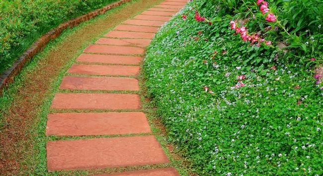 Создавая маршрут на своем участке с помощью тропинок